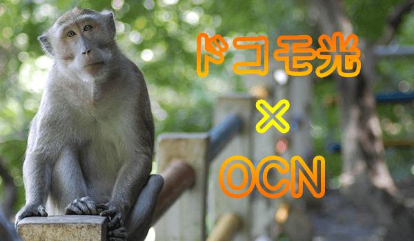 ドコモ光×OCN!IPv6「v6アルファ」評判・速度・キャッシュバックキャンペーンなど|ヒカリCOM