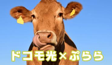 ドコモ光×ぷららの評判