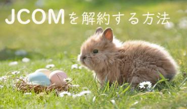 JCOMの解約