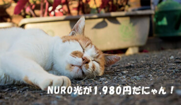 NURO光の980円特典キャンペーン