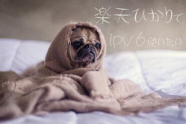 楽天ひかりのIPv6