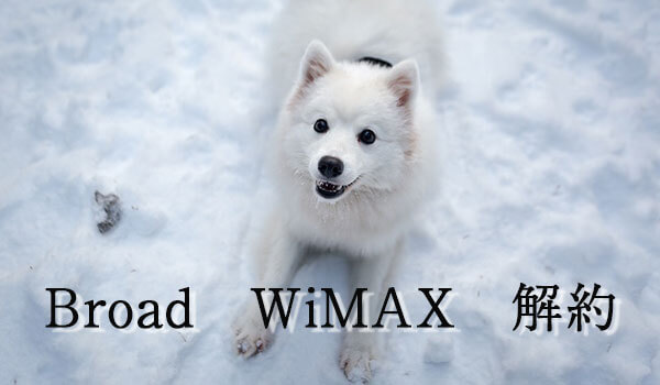Broad WiMAXの解約方法まとめ!違約金を無料にする方法も紹介!